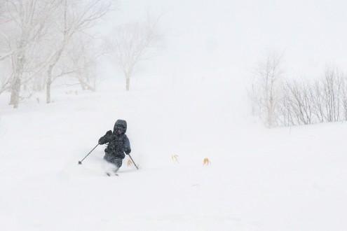 Taylor the snow ninja