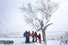 group furano